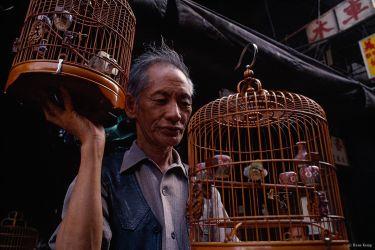 Man with songbirds, Kowloon, Hong Kong, 1992